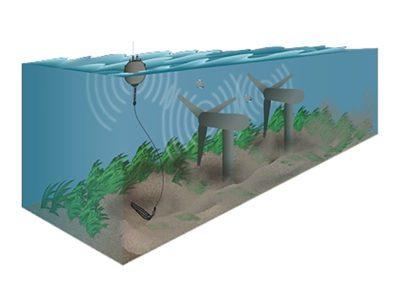 Acoustics Characterizing Noise Associated with Marine Energy
